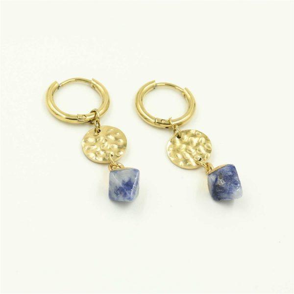 coin stone earrings blue