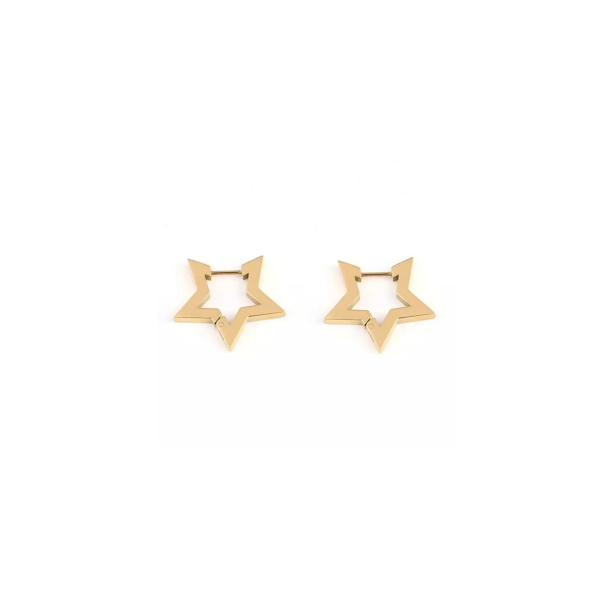 Star earrings gold